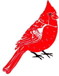 cardinal red&bl